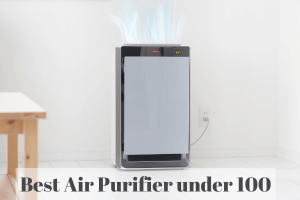 Best Air Purifier under 100