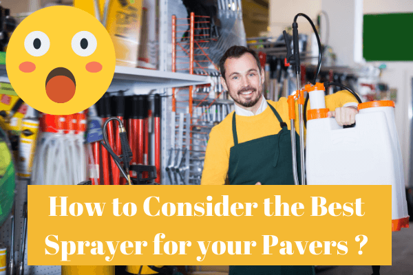 How to Consider the Best Sprayer for your Pavers